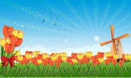 весна полей Стоковые Изображения RF
