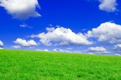 весна полей Стоковые Фотографии RF
