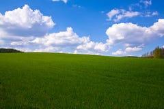 весна поля горизонтальная Стоковая Фотография