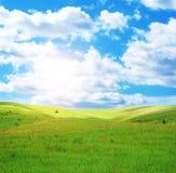 весна поля дня солнечная стоковые фотографии rf