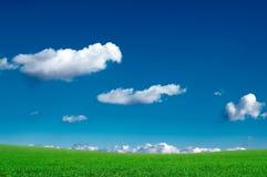 весна поля Стоковое Изображение RF
