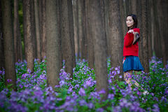 весна праздника Стоковое Фото