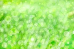 весна предпосылки искусства Стоковое Изображение RF