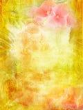 весна предпосылки красивейшая Стоковые Фотографии RF