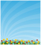 весна предпосылки Стоковые Фото