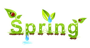 весна принципиальной схемы Стоковые Фото