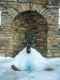 Весна пропуская из земли и не замерзая даже в зиме в Altai, России стоковые фото