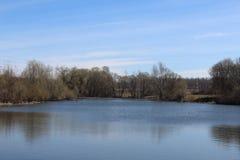 Весна пруда Стоковое Фото