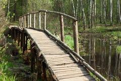 весна пущи моста Стоковое Фото