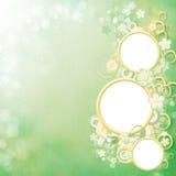 весна рамки красотки Стоковое Фото