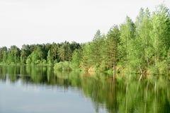 весна реки ландшафта Стоковые Фото