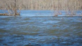 весна реки панорамы oka потока видеоматериал