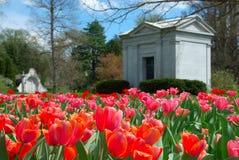 весна рощи кладбища Стоковая Фотография RF