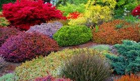 весна сада стоковые фото