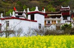 Весна тибетской деревни в Danba Стоковое фото RF
