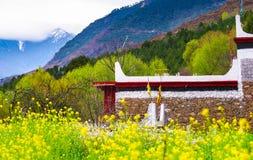Весна тибетской деревни в Danba Стоковые Фотографии RF