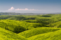 весна холмов Стоковая Фотография