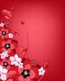 весна цветения свежая Стоковая Фотография