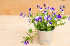 Весна цветет в винтажной вазе на деревянной предпосылке, деревенском стиле Стоковые Фото