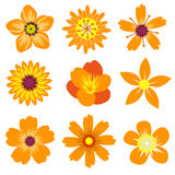 Весна цветет иллюстрация вектора Стоковые Фото