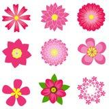 Весна цветет иллюстрация вектора Стоковое Фото