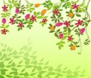 Весна цветет иллюстрация вектора Стоковое Изображение