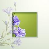Весна цветет карточка шаблона приглашения Стоковые Изображения