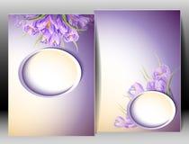 Весна цветет карточка шаблона приглашения Стоковая Фотография RF