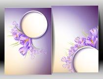 Весна цветет карточка шаблона приглашения Стоковые Фото
