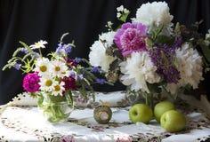 Весна цветет пионы Стоковое Изображение RF