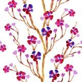 Весна цветет предпосылка акварели безшовная Стоковые Изображения