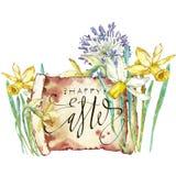 Весна цветет narcissus белизна изолированная предпосылкой Иллюстрация акварели нарисованная рукой Дизайн пасхи Помечать буквами - иллюстрация вектора