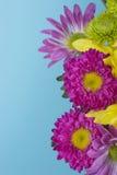 весна цветка букета свежая Стоковая Фотография