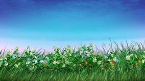 весна цветков Стоковые Фото