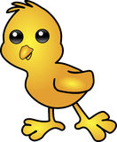 весна цыпленока Стоковые Фотографии RF