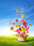 весна 2 поставок Стоковые Изображения