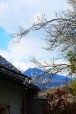 весна alps Стоковое Изображение RF