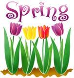 весна eps Стоковая Фотография
