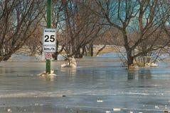 весна flooding Стоковые Фотографии RF