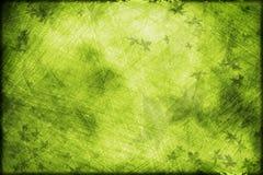 весна grunge предпосылки Стоковые Фотографии RF