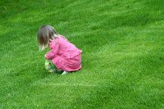 весна hunt пасхального яйца Стоковые Фотографии RF