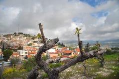 Весна Paphos Стоковые Изображения