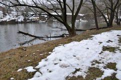 Весна thaw_4 в марте Стоковое Изображение