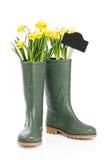 Весна Wellies Стоковые Изображения
