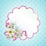 Весна Zephyranthes Стоковые Фотографии RF