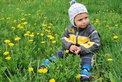 Мальчик в одуванчиках Стоковые Фотографии RF