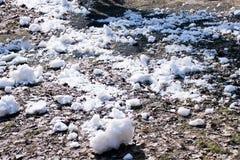 Весной последний снег стоковое изображение rf