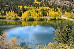 Весны Айдахо, Колорадо стоковые изображения