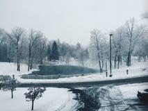 Весны Стоковые Изображения RF