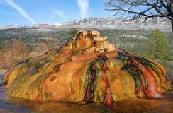 весны colorado горячие Стоковая Фотография
